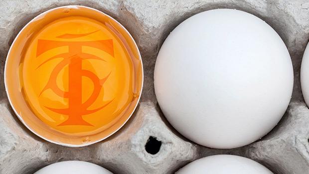 Fat Loss High Protein Breakfast