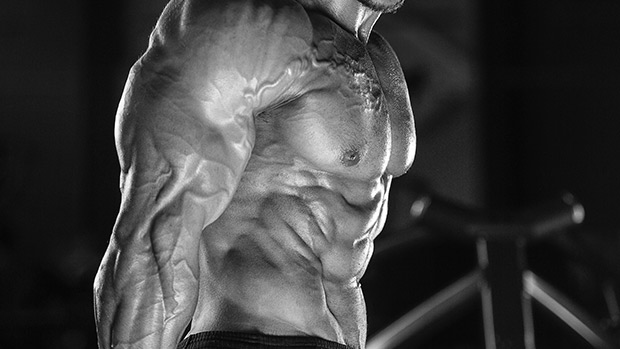 Train With Arnold's Golden Six