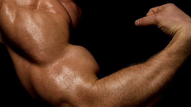 6 Muscle-Building Myths: Debunked!   T NATION 2