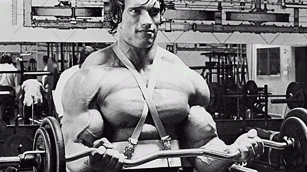 Arnold Curls
