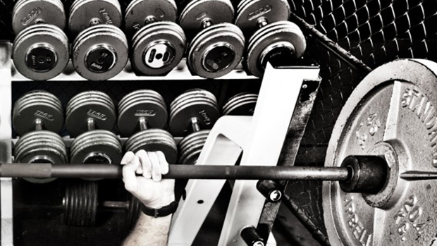 Barbell and Dumbbells