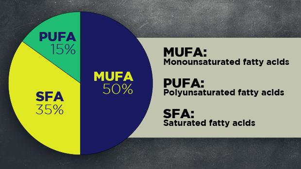 Fats Pie Chart