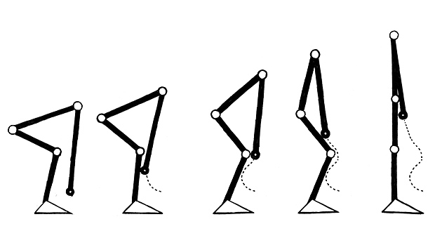 Figure 1: Bottom