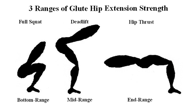 Glute-Hip-Extension