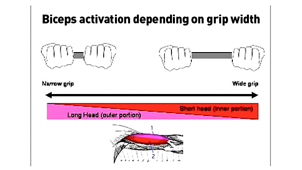Grip-width
