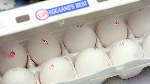 Omega-3 Enriched Eggs