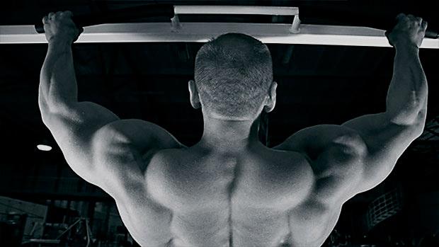 Pull-Up Big Back