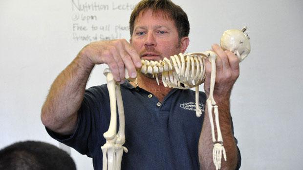 Skeleton Demonstration