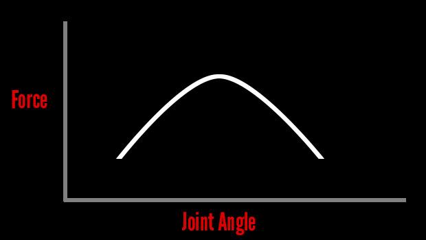 Strength Curve
