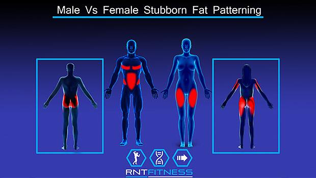 Stubborn Fat