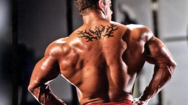 Build your back