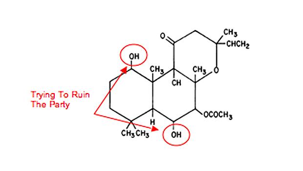 forskolin-structure