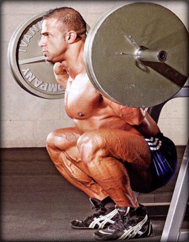 The Squat