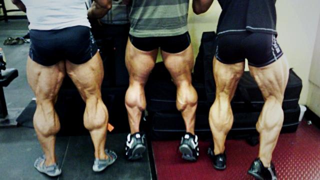 powerlift-legs