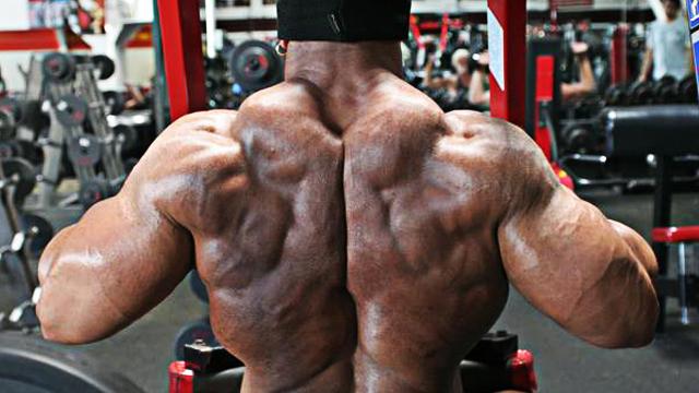 Upper Back Strength