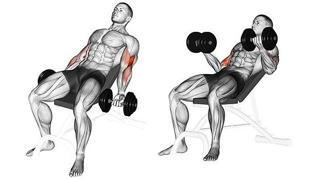 Incline Dumbbell Bicep Curls