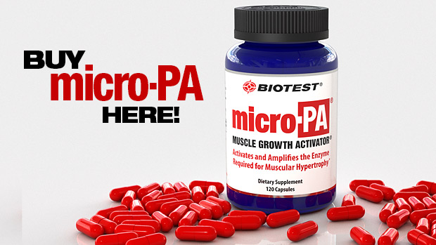 Get Micro PA Here