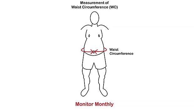 Belly Measurement
