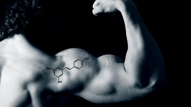 Resveratrol Arm