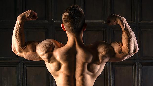 One Plate Big Shoulders
