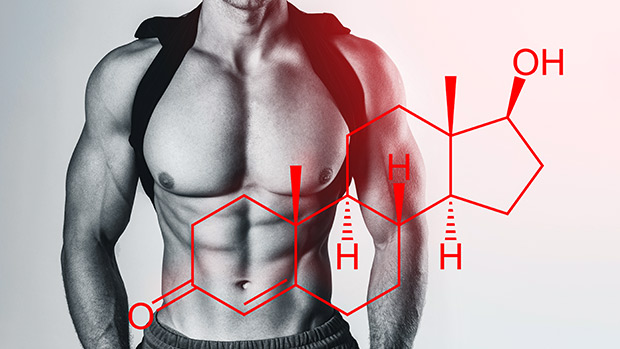 Lifetime Testosterone Optimization