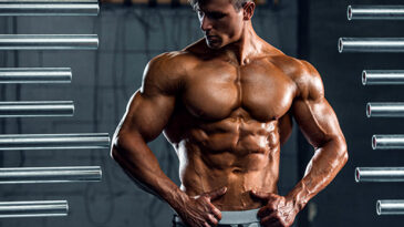 The 40 Laws of Muscle Strength