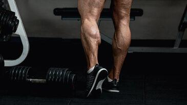 Calf Workout